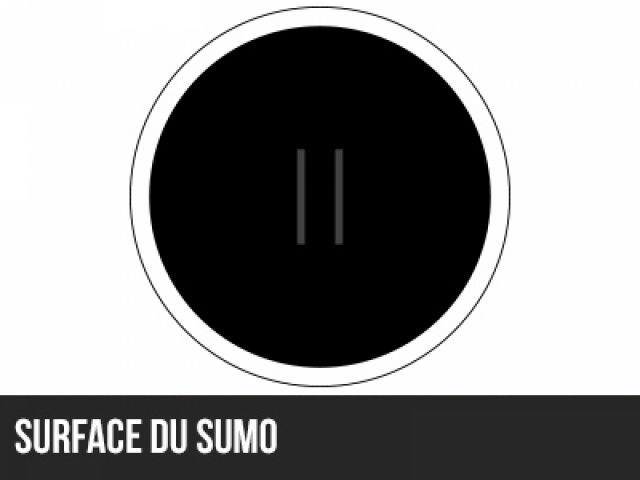 Surface SUMO